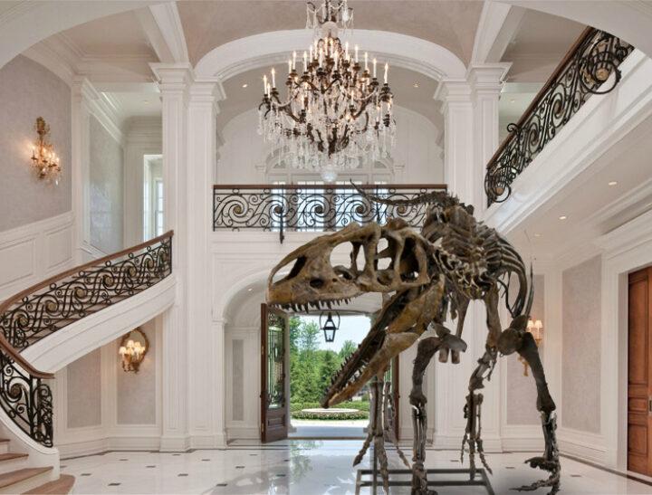 Dinosaur fossil fever